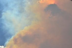 Forest Fire - Estes Park