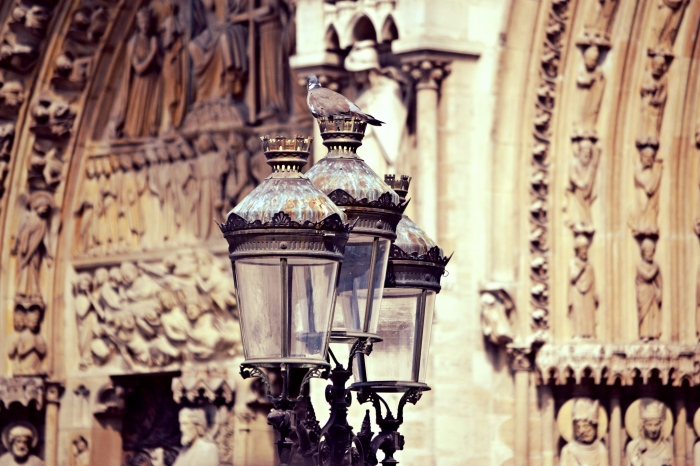 Lamps outside of Notre Dame